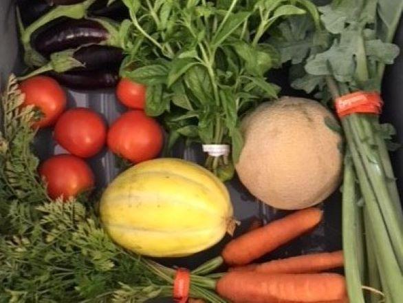 Box of fresh produce