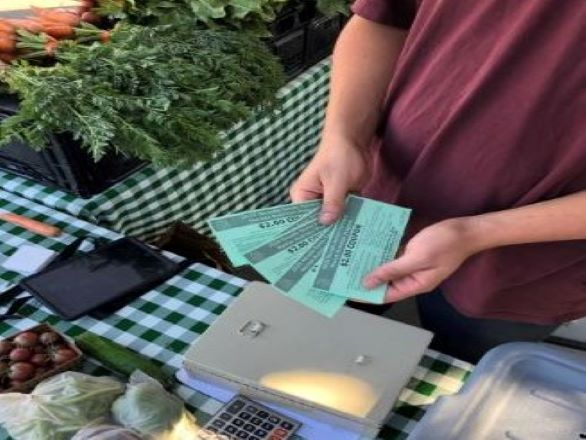 DFI market cashier accepting WIC and Seniors Farmers Market coupons