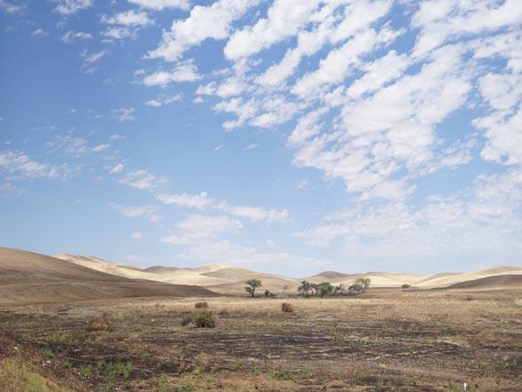 burnt rangeland